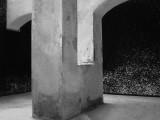 Elvio-Chiricozzi-Cio-che-non-muta-in-dialogo-con-Marco-Lodoli-e-Mariangela-Gualtieri--foto-di-Federico-Ridolfi-courtesy-Fondazione-VOLUME-008.jpg